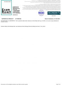 Analisi-Zugliano-091017_2