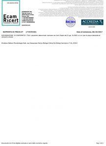 analisi-acqua-Isola-Vicentina-11-10-2017-2